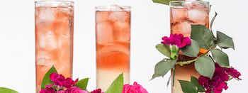 Rose Limonade